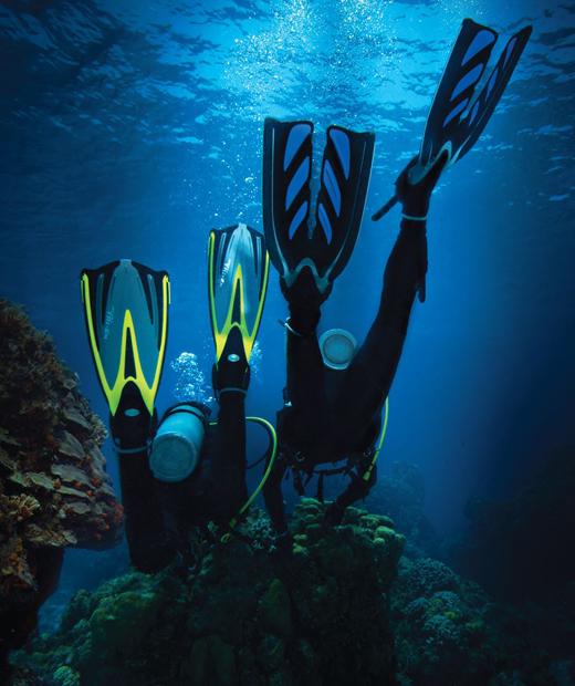 woo-cours-plongee